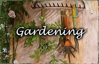 ガーデニング・植栽