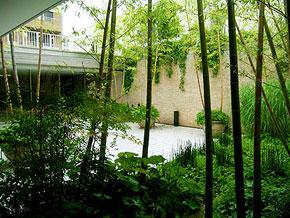 赤坂「竹林の庭」