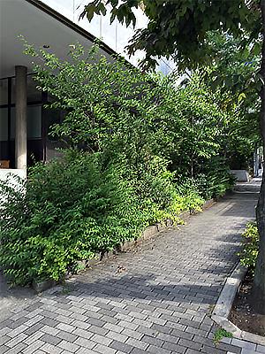 Le Gaulois(現在は北海道に移転されています)
